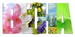 Весна идет, весне — дорогу!